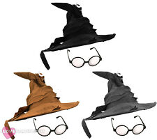 WIZARD HAT AND ROUND GLASSES FANCY DRESS COSTUME ACCESSORY BOOK FILM CHARACTER