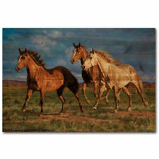 WGI-GALLERY Racing the Sun by Chris Cummings Painting Print Plaque