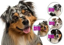AUSTRALIAN SHEPHERD NOSE BUTTER® for Rough, Dry Aussie Noses in Tins & Tubes