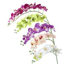 """Artificial Simulation Butterfly Orchid Flowers Home Wedding Decoration 75cm/ 30"""""""