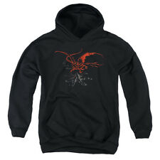 The Hobbit Smaug Big Boys Pullover Hoodie