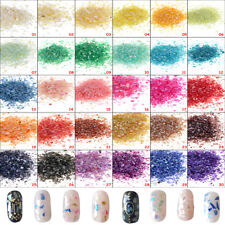 Crushed Shell Powder 10g for Nail Art Acrylic False Tips Salon Craft Decoration