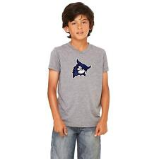 Westfield State Univ. Owls Youth Short Sleeve T-Shirt Distressed Logo  Design 2