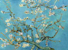 Almond Branches in Bloom, San Remy, c.1890 Art Print by van Gogh, Vincent