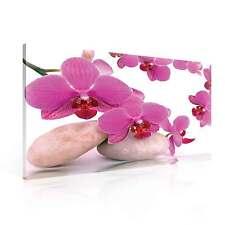 Orchid Flowers Stones CANVAS PRINT WALL ART XXL (PP136WS)
