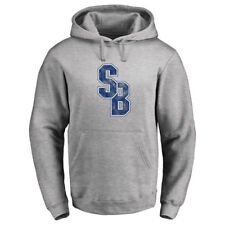 Stony Brook Seawolves Classic Primary Logo Pullover Hoodie - Ash - NCAA
