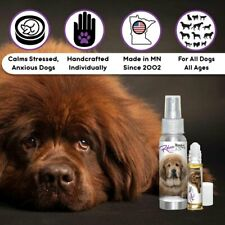TIBETAN MASTIFF RELAX DOG AROMATHERAPY FOR SCARED, ANXIOUS DOGS THUNDERSTORMS +