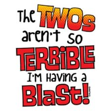 The Twos Aren't So Terrible I'm Having A Blast T-Shirt Cute Funny Kids Tee