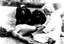 Tarzan The Ape Man Tarzan with a Lady and Two Monkeys High Quality Photo