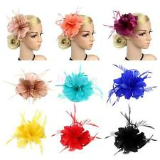 Vintage Woman Lady Feather Hair Clip Wedding Tea Party Halloween Fascinator