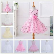 Lace Baby Princess Bridesmaid Flower Girl Dresses Wedding Formal Party Birthday