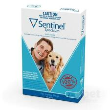 NEW Sentinel Spectrum - Tasty Chew - Flea and Worm Treatment for Large Dogs 22kg