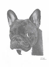 FRENCH BULLDOG dog LE art drawing prints avail 2 sizes A4/A3 & greetings Card