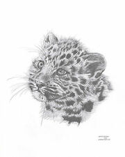 LEOPARD CUB Limited Edition art drawing prints 2 sizes A4/A3 &  Card Available