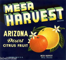 CRATE LABEL ARIZONA VINTAGE CITRUS FRUIT PHOENIX MESA HARVEST SCARCE 1950S