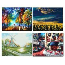 NEW Acrylic Paint by Numbers Kid Rural Landscape DIY Oil Painting 40X50CM Canvas