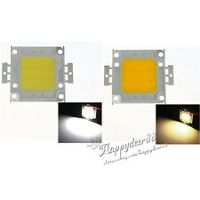 Cool/Warm White Lamp Chips High Power 30Mil SMD LED Bulbs Beads For Flood Light