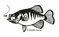 Crappie Decal MD #1 Fishing Boat/Truck Window Stickers