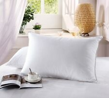 Luxury 500 Thread Count Combed  Cotton White Goose Down Pillow