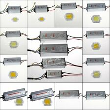 10W 20W 30W 50W 100W LED Chips Lamp + Waterproof  LED Driver High Power Supply
