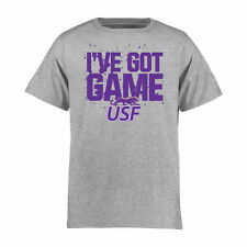 University of Sioux Falls Cougars Youth Heather Gray Got Game T-Shirt