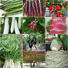 Various Heirloom Garden Vegetable Seed Organic Plant Non-GMO Seeds Bank Survival