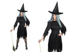 Black Witch Costume Spooky Halloween Ladies Fancy Dress Outfit