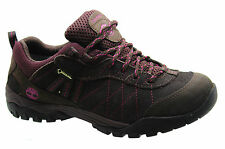 Timberland Earthkeepers Carrigan Notch Low GoreTex Womens Trainers Shoe 8402R U8