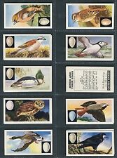 """UNITED DAIRIES 1961 """"BIRDS AND THEIR EGGS"""" TEA CARDS - PICK YOUR CARD"""