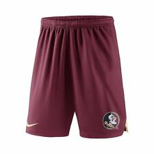 NEW Men's NIKE Florida State Seminoles Dri-FIT BASKETBALL FOOTBALL GYM SHORTS
