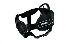 DT FUN with Chest Support Dog Harness in Reflective Trim - HOT DOG