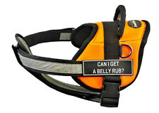 DT Works Chest Support Orange Dog Harness Velcro Fun Patch CAN I GET A BELLY RUB
