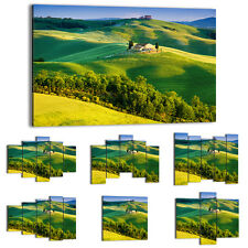 Canvas Print Framed Picture 47 Shapes Wall Art field nature landscape 2616 UA