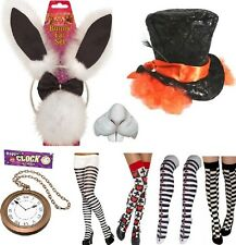Alice in Wonderland Fairytale Mad Hatter Fancy Dress Accessories Any