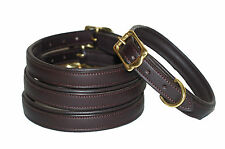 European Leather dog collar lined and padded with solid brass fittings