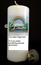 Personalised Pet Loss Memorial Remembrance Absence Candle Rainbow Bridge (med)