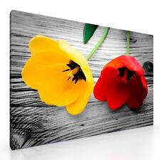 """Large Tulip Flowers on Wood Canvas Picture Print Artwork 20""""x30"""" New Wall Art"""