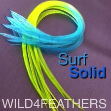 Feather Extensions Multi Coloured Bright Grizzly Pack Beads Tools Kits 3+1 FREE
