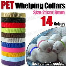 Whelping Collars 14 Colour Choice For Kittens, Puppies, Cats, Ferrets