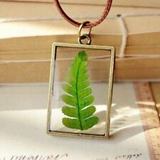 Rock Fern Plant Specimens Pendant Lady Chain Retro Real Dried Flower Necklace