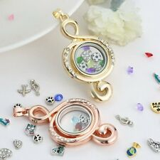 Hot Sale Floating Crysral Photo Frame Charms Locket For Necklace Valentines Gift