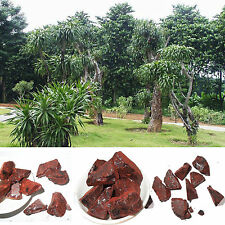 5oz Dragon's Blood Resin Incense 5oz 100% Natural Wild Harvested w/charcoal CW