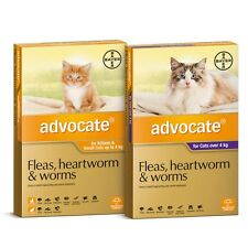 ADVOCATE for Cats - Fleas, Heartworm,Hookworm, Roundworm & Ear Mites 6-Pack-SYD