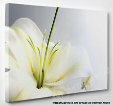 X LARGE STUNNING White Lily Flower Picture Canvas Print Wall Art A1 A2 A3