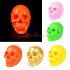 Resin Human Skull Replica Skull Medical Collectable Model Home Decoration