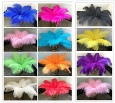 Wholesale 10-100pcs High Quality Natural Ostrich Feathers 8-10inches / 20-25cm