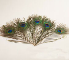 10-100pcs natural peacock tail feathers eyes 10-12-inches/25-30cm