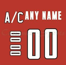 IIHF Hockey 2002 Team Canada Red 3rd Jersey Customized Number Kit un-sewn