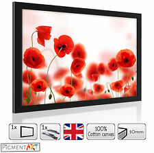 RED POPPY POPPIES FLOWERS FLORAL - WOODEN PICTURES FRAMES CANVAS WALL ART PRINTS