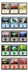 Russian and English Basic Land Set MTG NM Magic The Gathering